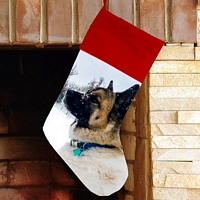 Red Christmas stocking personalized with favorite photo of dog with winter background