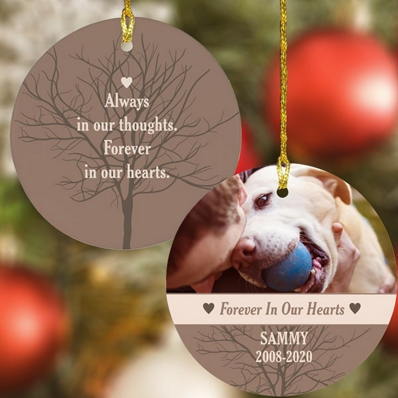 Tree Silhouette dog memorial Christmas ornament personalized with picture of dog with his human, dog's name and life date on front side and phrase 'Always in our thoughts, Forever in our hearts' over tree background on the back side